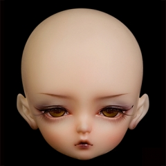 Scorpio sp P  (Face up)